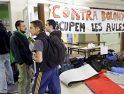 Un estudiante de la UAB empieza una huelga de hambre indefinida contra el plan Bolonia