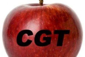 Excelente resultado de CGT Enseñanza en Huesca y Zaragoza