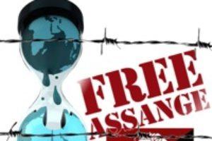 15 enero: CGT-Valencia se adhiere a la convocatoria de Free Wikileaks