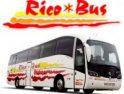 CGT constituye Sección Sindical en Autobuses Rico (Cádiz)