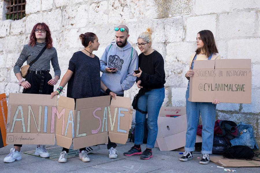 Protesta histórica por el clima - Imagen-1