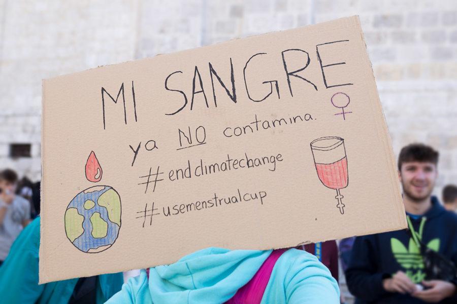 Protesta histórica por el clima - Imagen-20