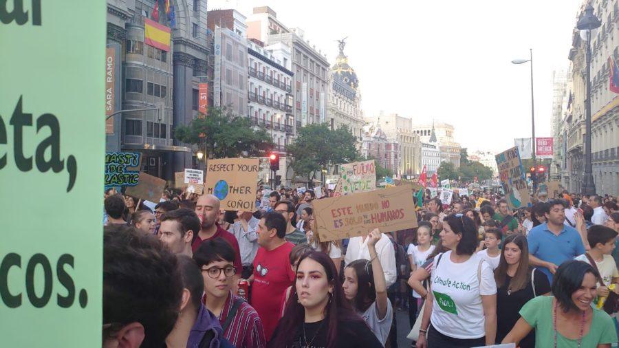 Protesta histórica por el clima - Imagen-36