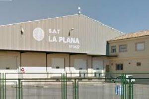 CGT apoya a los recolectores despedidos en SAT La Plana Burriana por reclamar el salario del convenio de la naranja