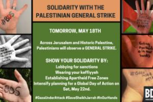 PALESTINA | Solidaridad con la huelga general palestina en la Palestina histórica