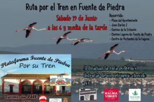 Marcha en Fuente de Piedra por el tren de los flamencos